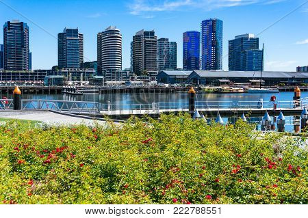 Picturesque water front cityscpae with yachts and piers on sunny day with green lush plant on the foreground
