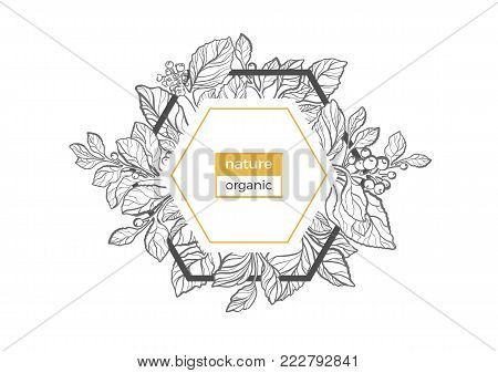 Trendy template of geometrical nature frame. Symbol of organic. Floral bouquet Card of mate branch with berry, leaf, flower Art deco Logo in hexagon Vector golden summer label Retro sketch Copy space