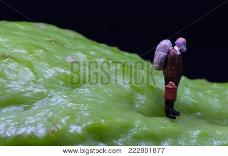 Old man figure walking on fruit skin. Senior traveler figurine on rough exotic vegetable. Senior man healthy diet concept. Active lifestyle in elderly age. Aged backpacker on asian vegetable chayote