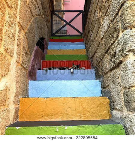 Photo shoot of an old house entrance, made of colourful  stone steps.