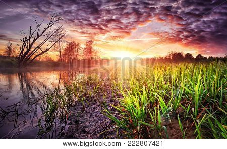 Spring landscape of colorful sunrise with beautiful sky over river. Wild spring nature in the morning. Vivid sunbeams on horizon and shining green grass on shore