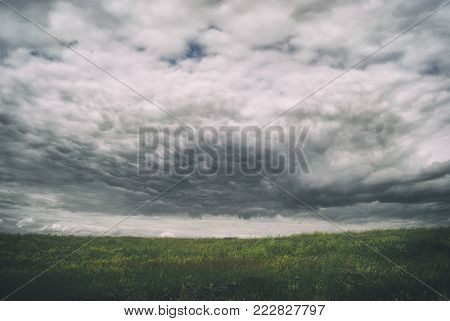 Stormy cirrus cumulus clouds over the vast green meadows. thunderstorm .