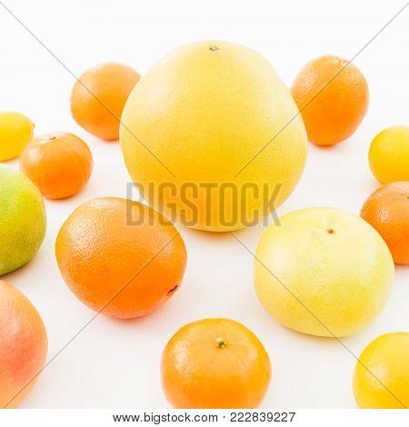 Citrus fruits - lemon, orange, grapefruit, sweetie and pomelo isolated on white background. Summer background