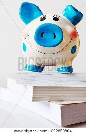 economy and finance - savings in a piggy bank for education and school fee