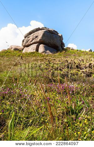 travel to France - boulder at green moorland in Ploumanac'h site of Perros-Guirec commune on Pink Granite Coast of Cotes-d'Armor department in the north of Brittany in sunny summer day