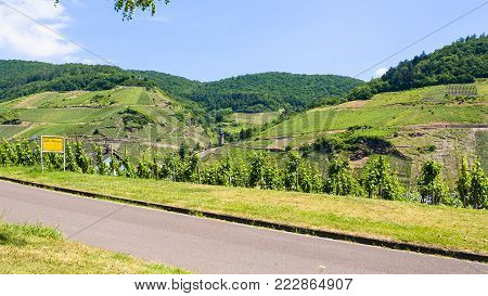 travel to Germany - road and vineyards along Mosel river in Cochem - Zell county on Moselle wine route in summer day (Text on the road sign: town