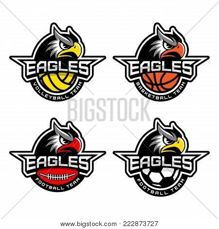 Four eagle mascots for sport teams. Vector illustration.