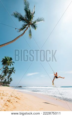 Happy man dangles on tropical palm tree swing