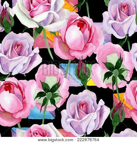 Wildflower tender pink rose flower pattern in a watercolor style. Full name of the plant: tender pink rose, hulthemia. Aquarelle wild flower for background, texture, wrapper pattern, frame or border.