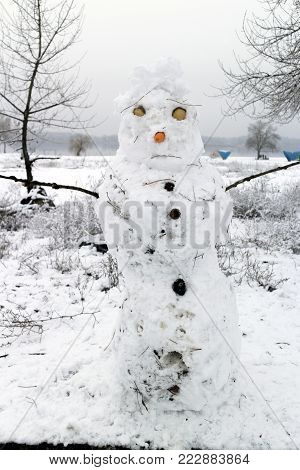 Snowman with a nose of carrot and with eggshell eyes.