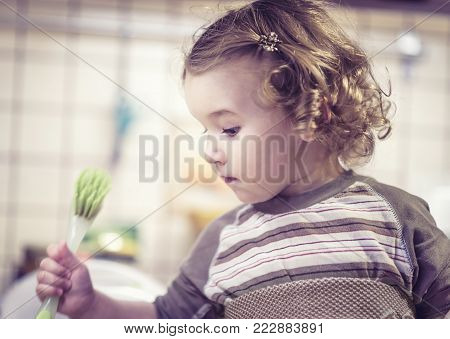 Cute two-year-old girl learns to wash dishes in kitchen. Little child uses a brush for washing of ware.