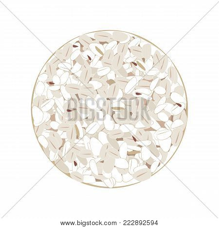 Wholegrain crispbreads isolated on white background. Top view. Flat vector illustration