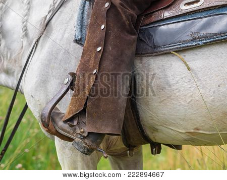 The cowboy on a white horse  in cowboy's western riding boot with spur boots and leather  chaps. Legs in stirrups. Spurs