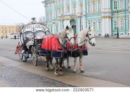 Old Retro Horse Carriage in Front of Winter Palace on Palace Square in St. Petersburg, Russia. Horse-Drawn Vehicle at Historical Saint-Petersburg Downtown Street on Winter Season Wallpaper.