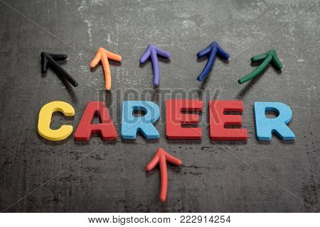 Career opportunities concept by colorful wooden alphabets CAREER with multi directional arrow on dark black cement wall.