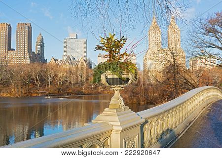 A view on Manhattan from the Bow bridge in Central Park, New York City. Tranquil winter morning near The Lake in Central Park.