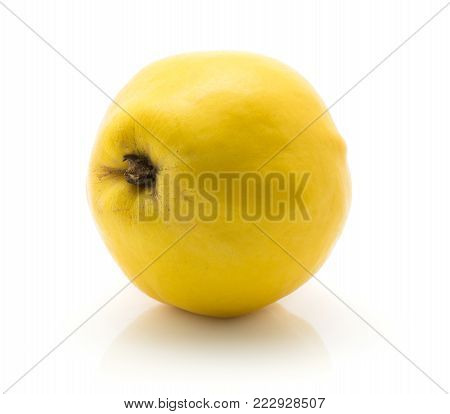 One yellow quince isolated on white background raw ripe
