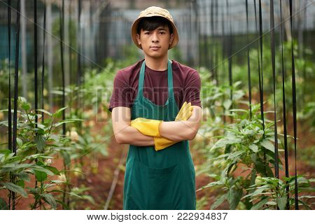 Portrait of young Vietnamese agro-engineer standing in hothouse