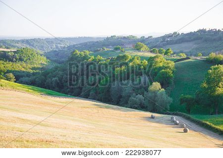 Animal hay rolls, in the hills of Magliano Sabina.