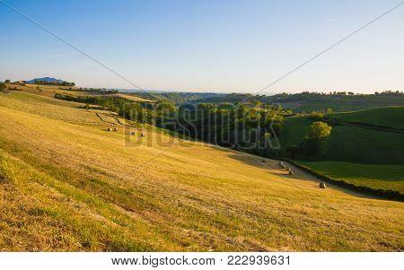 Animal hay rolls, in the hills of Magliano Sabina.