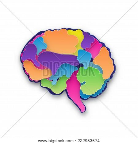 Colorful vector brain illustration, layered cut out colored paper human brain. Creative mind, learning and design concept. Paper carve. Isolated on white