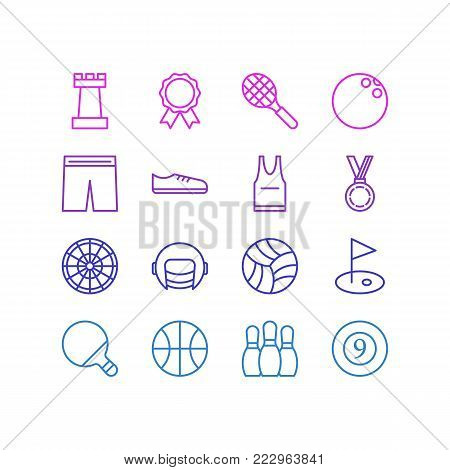 Vector illustration of 16 sport icons line style. Editable set of chess figure, billiards, reward and other icon elements.