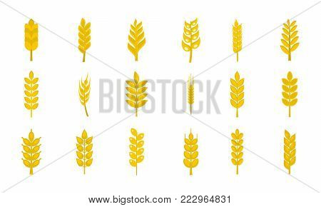 Wheat icon set. Flat set of wheat vector icons for web design isolated on white background