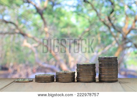 Coin pile stacked in increasing chart shape on wood board with out of focus big tall green trees canopy background. Environmental friendly economy. Finance business of saving nature concept.