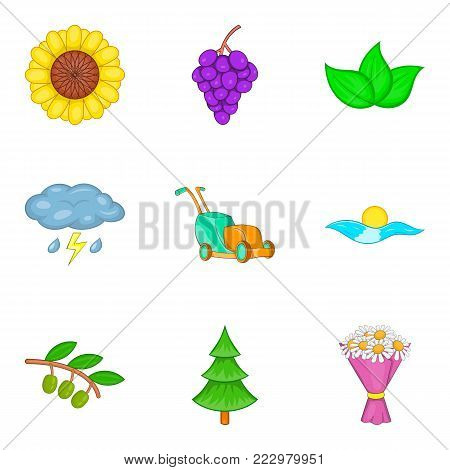 Pollination icons set. Cartoon set of 9 pollination vector icons for web isolated on white background