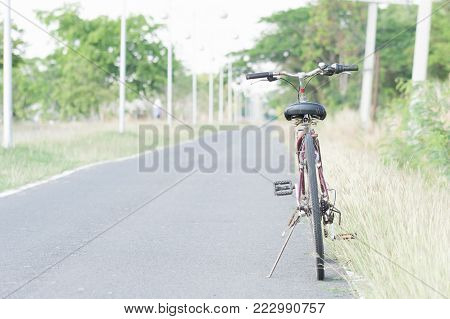 spring landscape with Bicycle on the road