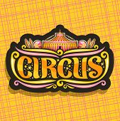 Vector logo for night Circus, cut sign with carnival big top, original brush font for title text circus, vintage decoration with juggling clubs, balls and circus fun fair tent on abstract background. poster