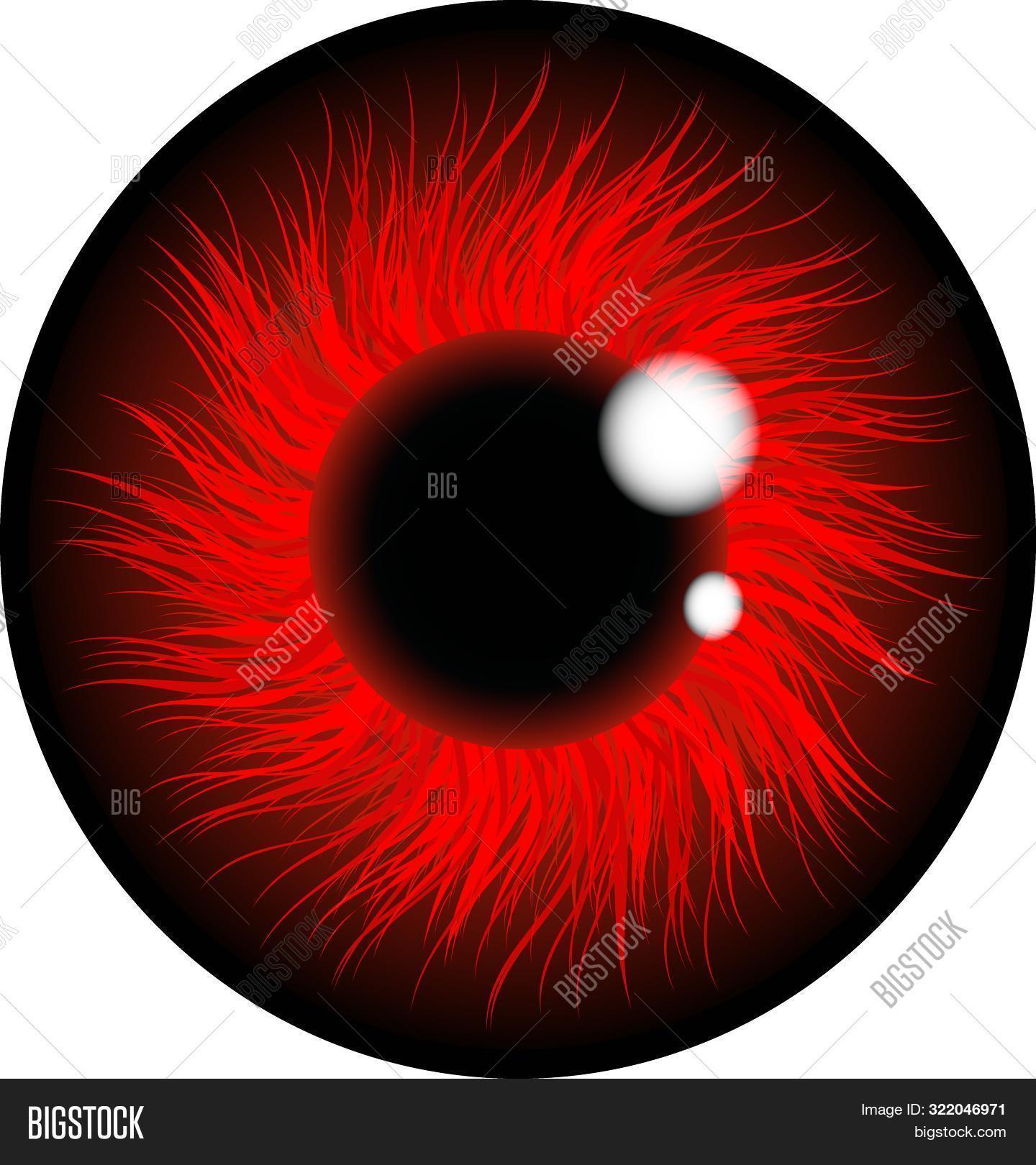 Red Eye Pupil Retina Image & Photo (Free Trial) | Bigstock