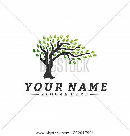 Colorful Vibrant Tree Logo Design Concept Vector. Root Of Tree Life Logo Design Template Inspiration