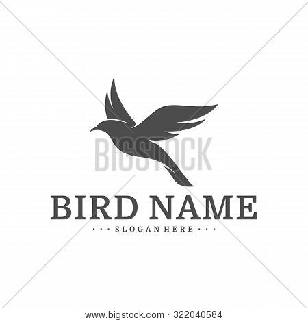 Bird Logo Design Vector Template. Bird Icon Vector Concept
