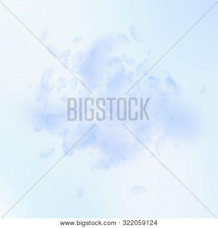 Light Blue Flower Vector Photo Free Trial Bigstock