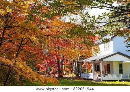 Karuizawa Autumn Scenery View, One Of Best-known Resort Villages In Japan. Colorful Tree With Red, O