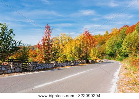 Country Road In Mountains On A Sunny Day. Wonderful Autumn Weather. Trees In Colorful Foliage. Blue