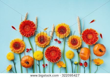 Creative Autumn Composition With Orange And Yellow Gerbera Flowers, Decorative Pumpkins, Wheat Ears
