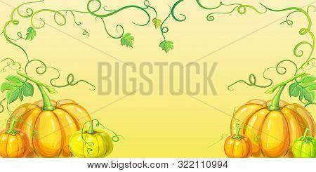 Autumn Orange Pumpkins Horizontal Banner Design Template For Farm Market Banners, Thanksgiving Day B