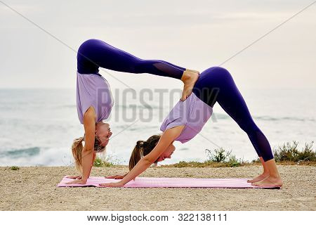 Two Yogi Women In Sportswear Do Partner Yoga Exercise On Pink Mat Make Downward Facing Dog Adho Mukh