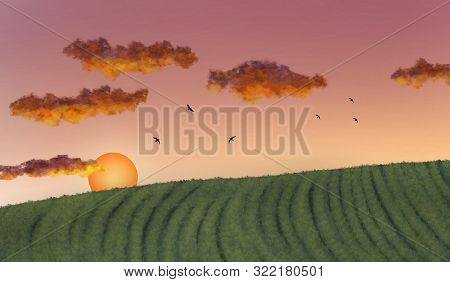 Green Tea Plantation With Cloud And Sky At Sunset