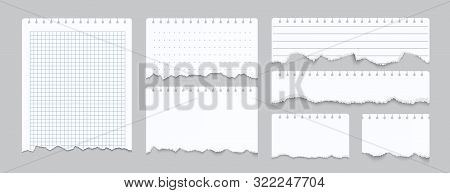 Torn Notebook Papers. Realistic Blank Gridded Notebook Ripped Out Papers. Vector Illustration White