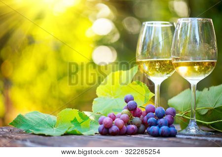 Wine. White Wine in wineglass. Romantic Dinner Outdoor. Wine tasting. Couple wine glasses and grapes close-up. Outdoors. Winemaking