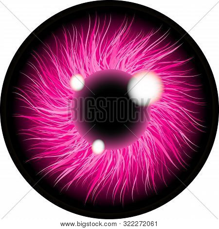 Pink Eyes Illustration Contact Lens. Isolated On Transparent Background . Eyes Art. Woman Eye. The E