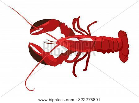 Cooked Red Lobster Icon Isolated On White Background, Fresh Healthy Seafood, Vector Illustration.