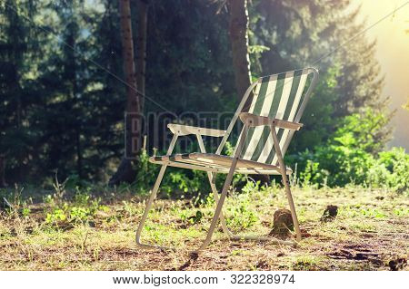 Striped Chaise Longue On The Field Near The Forest