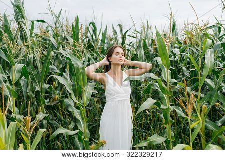 Girl In White Dress With Closed Eyes Standing In A Corn Field, Enjoying Nature, Environmental Friend