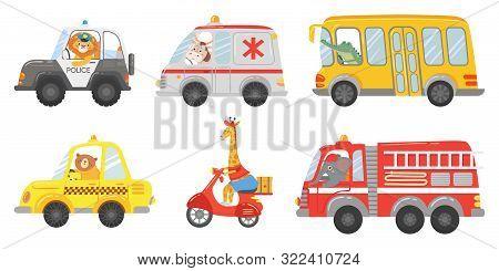 Cartoon Animal Driver. Animals In Emergency Ambulance, Firetruck And Police Car. Zoo Taxi, Public Bu
