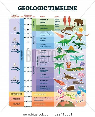 Geologic Timeline Scale Vector Illustration. Labeled Earth History Scheme With Epoch, Era, Period, E