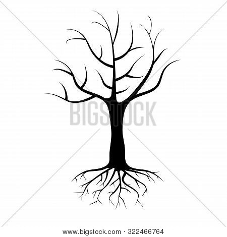 Dead Single Tree With Roots Isolated On White Background. Bare Tree Vector Illustration.